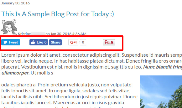 Social media share buttons on your blos posts
