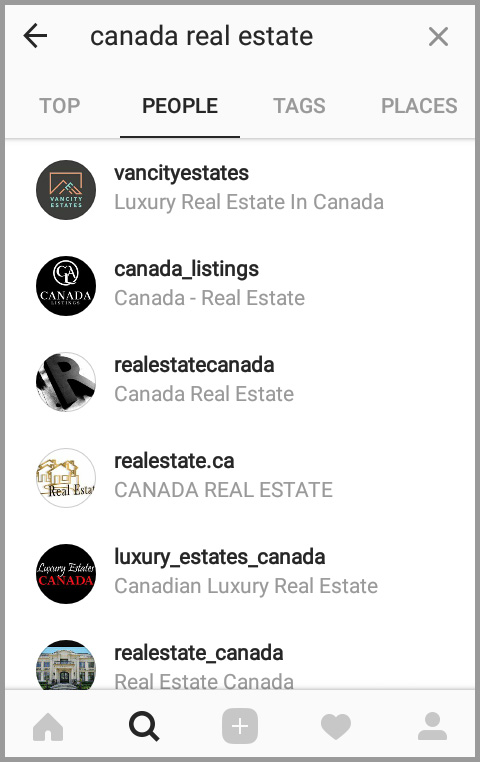 Sample search for Canada real estate businesses in Instagram