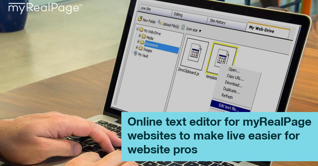 Online Text Editor For MyRealPage Websites To Make Live Easier For Website Pros